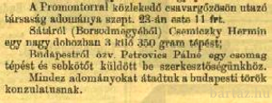 A Vasárnapi Újságból (1877)